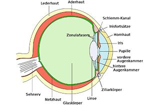 Eye scheme
